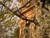 brasov-aprilie-2012-016