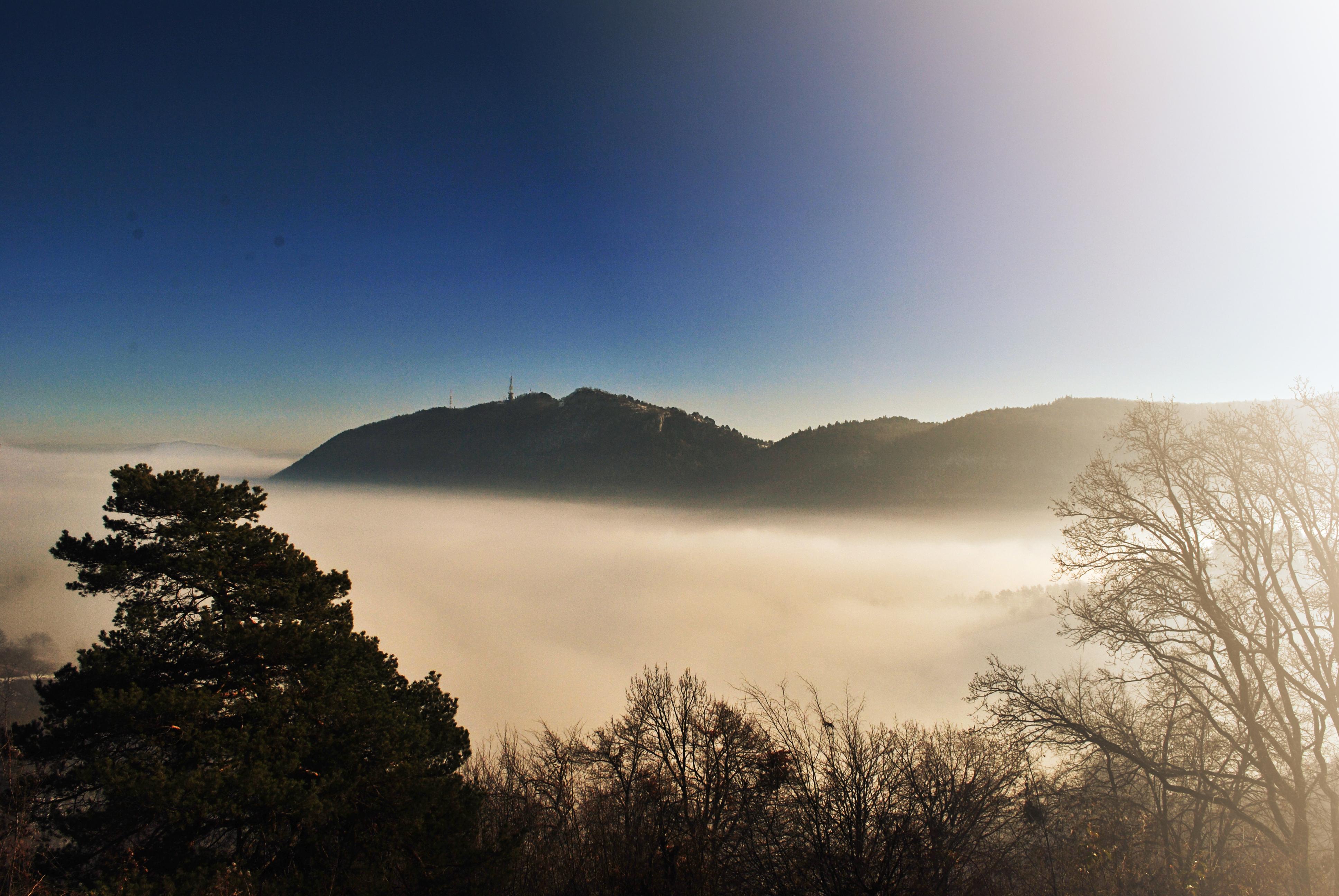 Decembrie 2013, peste ceață